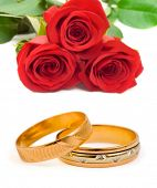 Roses and wedding rings isolated on white background