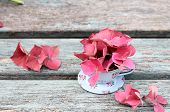 Autumn flowers and cup