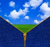 Zipper and summer landscape - nature concept