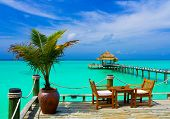 picture of kuramathi  - Cafe on the beach ocean and sky - JPG