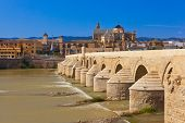Bridge at Cordoba Spain - nature and architecture background