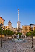 Square of Triumph of San Rafael in Cordoba Spain - architecture background