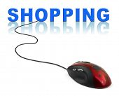 Computer mouse and word Shopping - internet concept