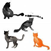 Silhouettes of cats made with watercolor