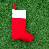 Christmas Socks On Green Grass