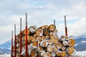 stock photo of logging truck  - Chopped firewood logs in a truck  - JPG