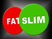 Slim Sign Means Weight Loss And Dieting