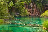 Plitvice lakes in Croatia - nature travel background