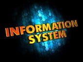 Information System - Gold 3D Words.