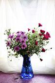 Still life of beautiful flowers in vase