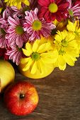 Beautiful chrysanthemum with apples on wooden background