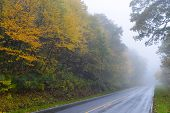 Road to foggy forest in Shenandoah National park with Autumn colors