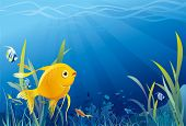 Gold fish in sea, underwater life, seaweeds. Vector illustration