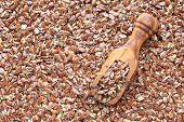 Broken Flax Seeds In Wooden Scoops