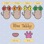 foto of blue tabby  - Infographic show detail of blue tabby cat eye color nose color and foot color - JPG