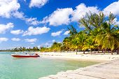 foto of caribbean  - Beautiful caribbean beach on Saona island Dominican Republic - JPG