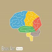 picture of frontal lobe  - Brain anatomy  - JPG
