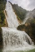 picture of jungle  - Water in motion Chiapas Jungle - JPG