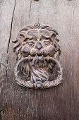 pic of wooden door  - Lion head Door knocker on old wooden door Bulgaria Europe - JPG