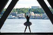 stock photo of kiev  - Silhouette of graceful ballerina in white tutu on a background of green slopes of the Dnieper Kiev - JPG