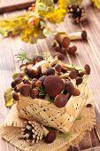 picture of edible mushrooms  - Edible mushrooms  - JPG