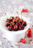 stock photo of cake stand  - Rainier cherries dipped in black chocolate on a white cake stand - JPG