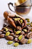foto of cardamom  - Coffee beans and cardamom on burlap - JPG