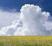 stock photo of cumulus-clouds  - Blue sky - JPG
