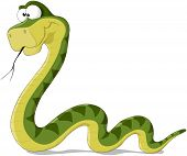 picture of green snake  - Cartoon illustration of a green snake - JPG