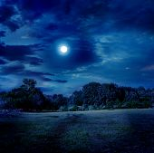 stock photo of moonlight  - moonlight landscape - JPG