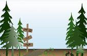 Trilha através da floresta