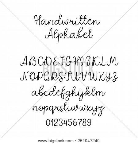 Wedding Calligraphy Fonts.Vector Calligraphy Alphabet Exclusive Letters Decorative Handwritten Brush Font For Wedding Monog Poster