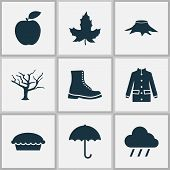 Seasonal Icons Set With Maple, Rain, Apple Pie And Other Apple Elements. Isolated Vector Illustratio poster