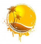 pic of florida-orange  - tropical sun - JPG