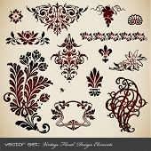 vector set: vintage floral design elements