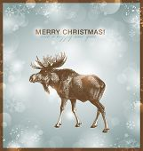 bright winter/christmas background or card with moose against a snowy blurred background