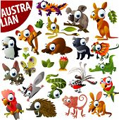 stock photo of wallabies  - australian animals big vector set - JPG
