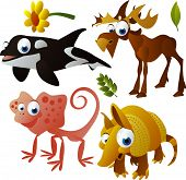 2010 animal set: orca, elk, armadillo, frill lizard