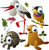 vector animals: stork, finch, badger, seal