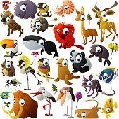image of possum  - big vector animal set - JPG