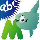 Alfabeto de animal: M es Mola Mola