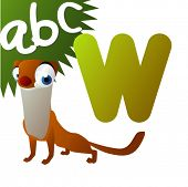 W if for Weasel