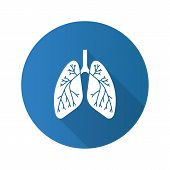 Human Lungs With Bronchi And Bronchioles Flat Design Long Shadow Glyph Icon. Respiratory System Anat poster