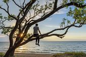 Man Sitting On The Tree Watching Sunset Over The Sea, Enjoying A Peaceful Moment. Travel Concept poster
