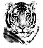 Tiger portrait made of halftone pattern