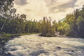 Beautiful River In Forest Nature. Peaceful Toned Nature Background. Fast Water Stream In Mountain Ri poster