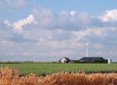 Wind turbine and farming