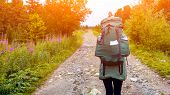 Atmospheric Moment In Mountains. Hiking Woman With Backpack Traveler On Forest.  Stylish Woman Hikin poster