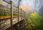 stock photo of appalachian  - Autumn Appalachian Hiking Trail Foggy Nature Blue Ridge Fall Foliage Bridge near Grandfather Mountain - JPG