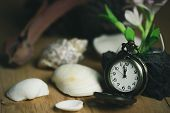 Vintage Pocket Watch And Shell On Wood Background. The Clock Is Near Midnight. The Concept Of Happy  poster